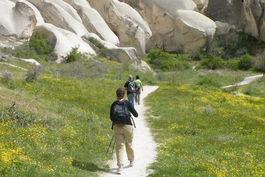 Half day hiking tour